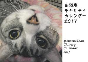 カレンダー2017.jpg